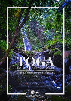Cover Book TOGA (Tanaman Obat Keluarga) at Yeh Labuh Waterfall, Selumbung Village, Karangasem, Bali.