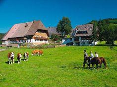 Unterhöfenhof | Hochschwarzwald Tourismus GmbH **דירה מעולה בחווה, עם הכרטיס האדום