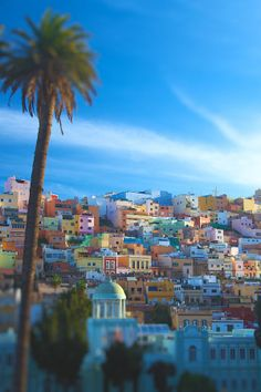 I would kill for a view like this. This is so extremely beautiful. Canary Island, Spain