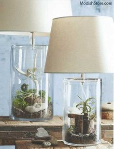 Roost Terrarium Lamps are made from two glass cylinder jars. An inverted upper jar lifts off, allowing the lower jar to be filled with anything you can imagine.