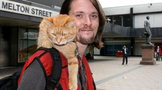 The Big Issue: Help give Bob the cat and James a pitch at Angel again