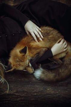"""April « 2015""""Les femmes se parent bêtement de la fourrure des animaux pour plaire aux hommes qui préfèreraient la leur"""""""