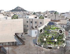 So sieht die Vision der Urban Farmers aus: Überall auf den Dächern gedeihen Pflanzen und Fische. zvg