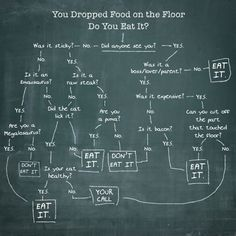 The scientific approach on deciding whether to eat the food you dropped on the floor.