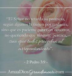 VERSÍCULO PARA MEMORIZAR Semana8 #estudioBiblicoenlinea #AmaaDiosgrandemente #1y2Pedro