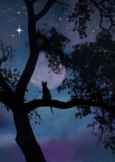 Silhouette Painting, Cat Silhouette, Black Cat Art, Moon Painting, Beautiful Nature Wallpaper, Warrior Cats, Animal Cards, Moon Art, Tile Art