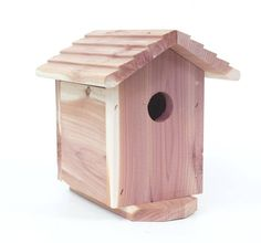 SecureShot NightVision Cedar Bird House Surveillance Camera/DVR with 1 Year Battery * Visit the image link more details. (This is an affiliate link) Surveillance Equipment, Security Equipment, Security Surveillance, Surveillance System, Wireless Home Security Systems, Security Alarm, Security Camera, Wireless Spy Camera, Hidden Spy Camera