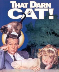 That Darn Cat Who remembers Sunday evening Disney shows? - they'd play the movies on TV. I loved Dean Jones and this was one of my favorites of his Disney movies. Classic Disney Movies, Disney Films, Classic Movies, Classic Books, Walt Disney, Disney Live, Old Movies, Great Movies, 1960s Movies