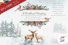 *Affiliate Link A Woodland Christmas - Graphic set ~ Illustrations ~ Creative Market - Washy watercolours depict a wintery yet warm woodland scene. Curious animals live amongst the fir trees, foliage and berries, creating a magical Christmas backdrop. Adobe Illustrator, Freelance Illustrator, Woodland Christmas, Magical Christmas, Watercolor Background, Watercolor And Ink, Watercolor Texture, Watercolor Painting, Pencil Illustration