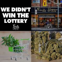 While we are disappointed to not be one of the lucky winners of the recent lottery we want to congratulate those that did win.  We would also like to offer our 25 years of experience in the cannabis industry to any of the winners that are looking for guidance and collaboration in hitting the April 1st date. We have strong locations with leases in place completed store design world-class management team with years of retail experience and trusted brand equity with over 25 years of… Queen Street West, Retail Experience, April 1st, Class Management, Disappointed, Store Design, Cannabis, Ontario, Collaboration