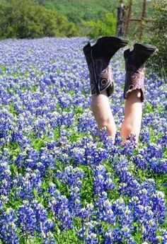 Boots in the Bluebonnets