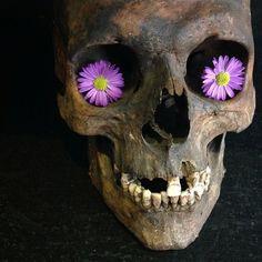Screaming Skull, Skull And Bones, Skulls, Beautiful, Vanity, Art, Dressing Tables, Art Background, Powder Room