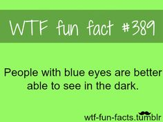 How much, I wonder? Is that why so many animals have yellowish eyes, or something?