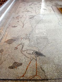 https://nearthejordanvalley.files.wordpress.com/2013/05/norman-williams-church-of-the-loaves-and-fishes-mosaic-floor-1-130518.jpg