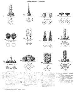 Ландшафтные группы из растений #gardenplanninglayout