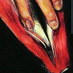 ♀ I'mma Summon My Golden Black Magical [Sirius B] Fingas' to Suggestively… Digital Art Girl, Hippie Art, Afro Art, Erotic Art, Art Techniques, Black Art, Female Art, Art Pictures, Fantasy Art