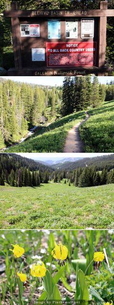 Beehive Basin Trailhead - Road Trip 2014 - Yellowstone or bust