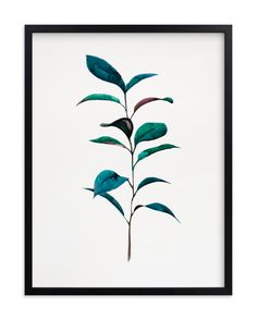 """""""Ruscus"""" - Grownup Open Edition Non-custom Art Print by jinseikou in beautiful frame options and a variety of sizes. Wood Canvas, Canvas Frame, Wood Art, Watercolor Plants, Watercolor Leaves, Tree Wall Art, Wall Art Decor, Goa, Running Art"""