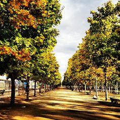 The Jardin Tuileries