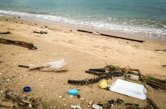The city of San Dieg