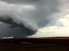 Barrow island -Australie