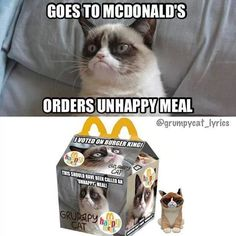 Funny pictures about Grumpy Cat at McDonalds. Oh, and cool pics about Grumpy Cat at McDonalds. Also, Grumpy Cat at McDonalds. Grumpy Cat Quotes, Grump Cat, Funny Grumpy Cat Memes, Cat Jokes, Funny Cats, Cat Cat, Grumpy Cat Images, Cats Humor, Funny Minion