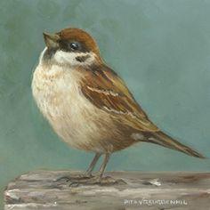 Ringmus – 8 x 8 cm – sold – www. Pretty Birds, Beautiful Birds, Still Life Photography, Art Photography, Happy Animals, Bird Species, Animal Paintings, Bird Art, Pretty Pictures