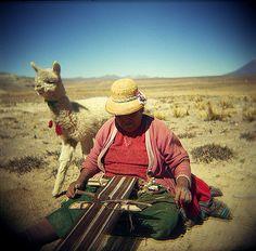 Alpaca and weaver... photo by Gavin Burnett.  The alpaca was the fibre of choice for Inca kings!