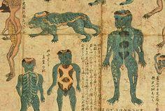 Old scroll painting of the Kappa demon This painting . Japanese Urban Legends, Japanese Art, Japon Tokyo, Japanese Mythology, Supernatural Beings, Japanese Illustration, Demonology, My Secret Garden, Kappa
