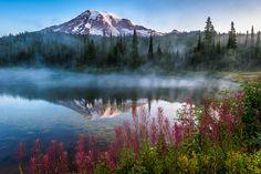 Mount Rainier Majesty by Mike Walker   Earth Shots