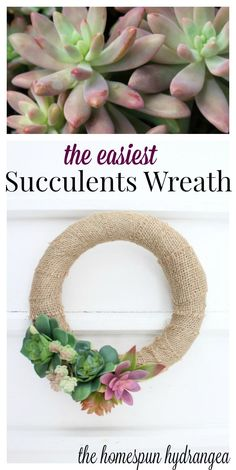 If you love succulents and succulents crafts you need to try this easy DIY succulents wreath.