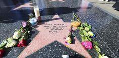 Admiradores crean estrella para @carrieffisher en Hollywood...