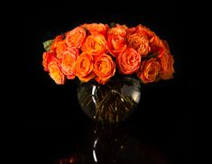 Fill Your Home With These Fall Flowers | The Zoe Report