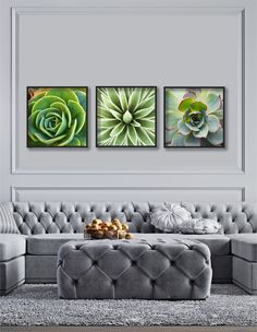 Girl Room: 75 Girl Room Ideas with Photos - Home Fashion Trend Succulent Wall Art, Cactus Wall Art, Leaf Wall Art, Large Wall Art, Wall Art Decor, Large Art, Succulents Art, Artwork Wall, Leaf Art