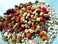 Raw Grain Free Granola