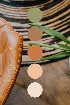 Earthy Color Palette, Colour Pallette, Colour Schemes, Color Palate, Decor Logo, Warm Colors, Colours, Colour Board, Pantone Color