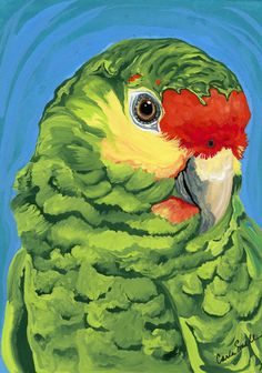 Amazon Parrot Pet Bird Art Original Painting -Carla Smale. via Etsy.