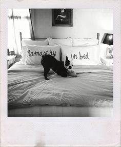 Namast'ay in Bed ♥️