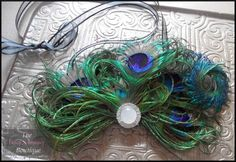 Peacock for Blog 1