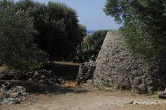 La Campagna salentina nei dintorni di Leuca con ulivi e una costruzione tipica (la pajara)