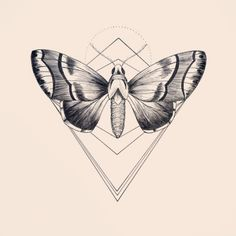 N°8 #Draw #Sketch #Tattoo #Tattooart #mothtattoo #moth #Geometry #line #linework #Design #DotWork