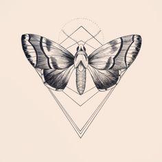 N°8 #Draw #Sketch #Tattoo #Tattooart #mothtattoo #moth #Geometry #line #linework #Design #DotWork