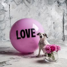 3 foot Big Love Ball with Faith | Color : Femmebot | Photo by Bob Garlick