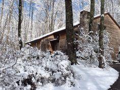 More winter yard