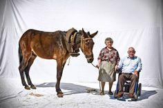 """Fé nos Burros - Faith in Donkeys""     Courtesy: João Pedro Marnoto | MediaUtopia (Portugal)."