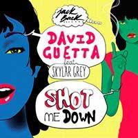 David Guetta Feat. Skylar Grey – Shot Me Down