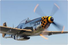 Warbird Fighters  P-51 Mustang