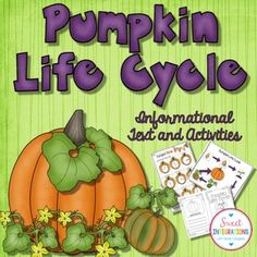 Your Kindergarten, 1st and 2nd grade classroom and homeschool students can learn about the cycle of pumpkins, math activities and literacy with a pumpkin and fall theme. A perfect unit for differentiation and goes along with any nonfiction pumpkin unit. {K, first and second graders, home school}
