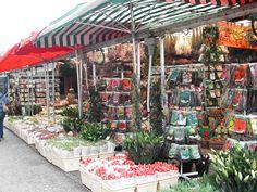 Amsterdam, Netherlands (Bloemenmarkt - Flower Market) HAVE TO DO !!!!!!!!!!***********