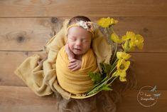 Newborn Baby Photography, Newborn Photographer, Children Photography, Pregnancy Photography, Newborn Shoot, Newborn Photo Props, Dragonfly Photography, Newborn Studio, Baby Poses